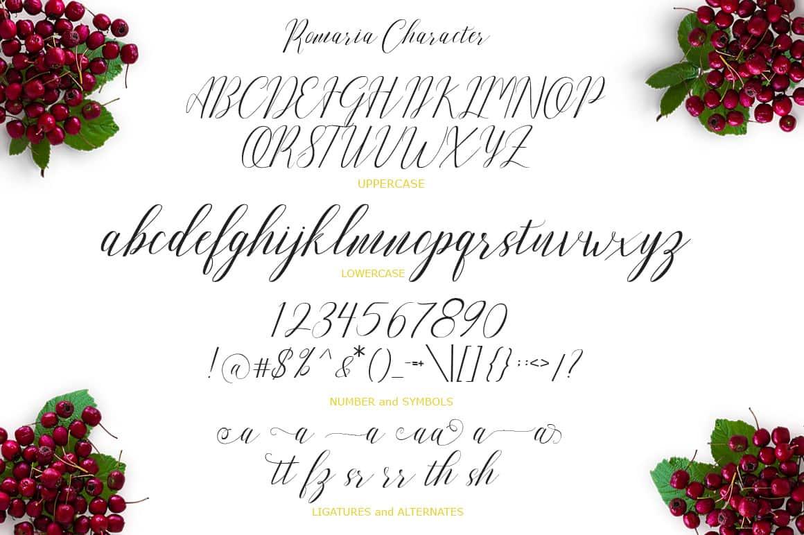 16 Handwritten Fonts - $15 ONLY - 8 min 1