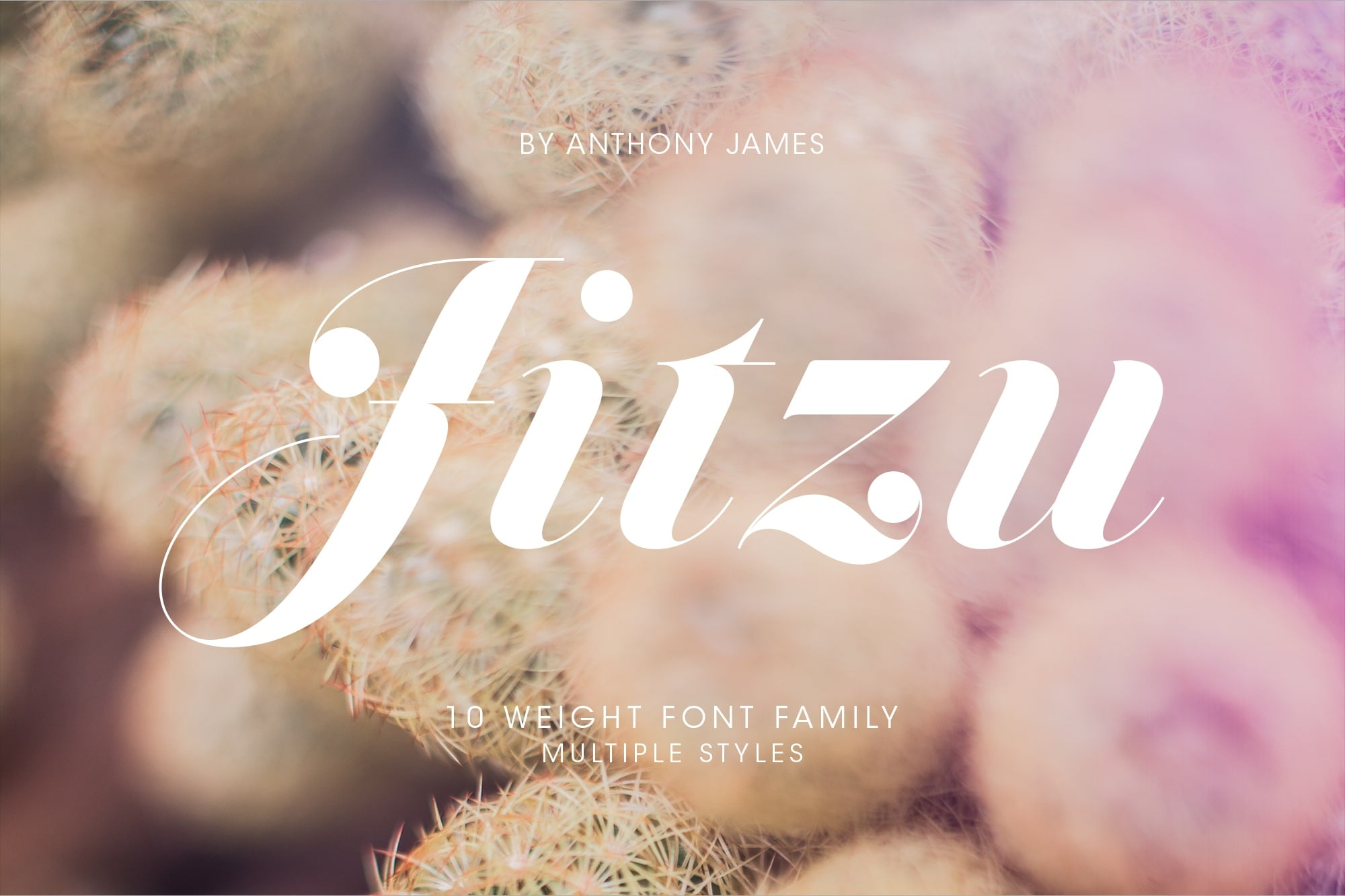 Simple Fonts - 33 Fonts in 13 Families Bundle - Jitzu 1 min