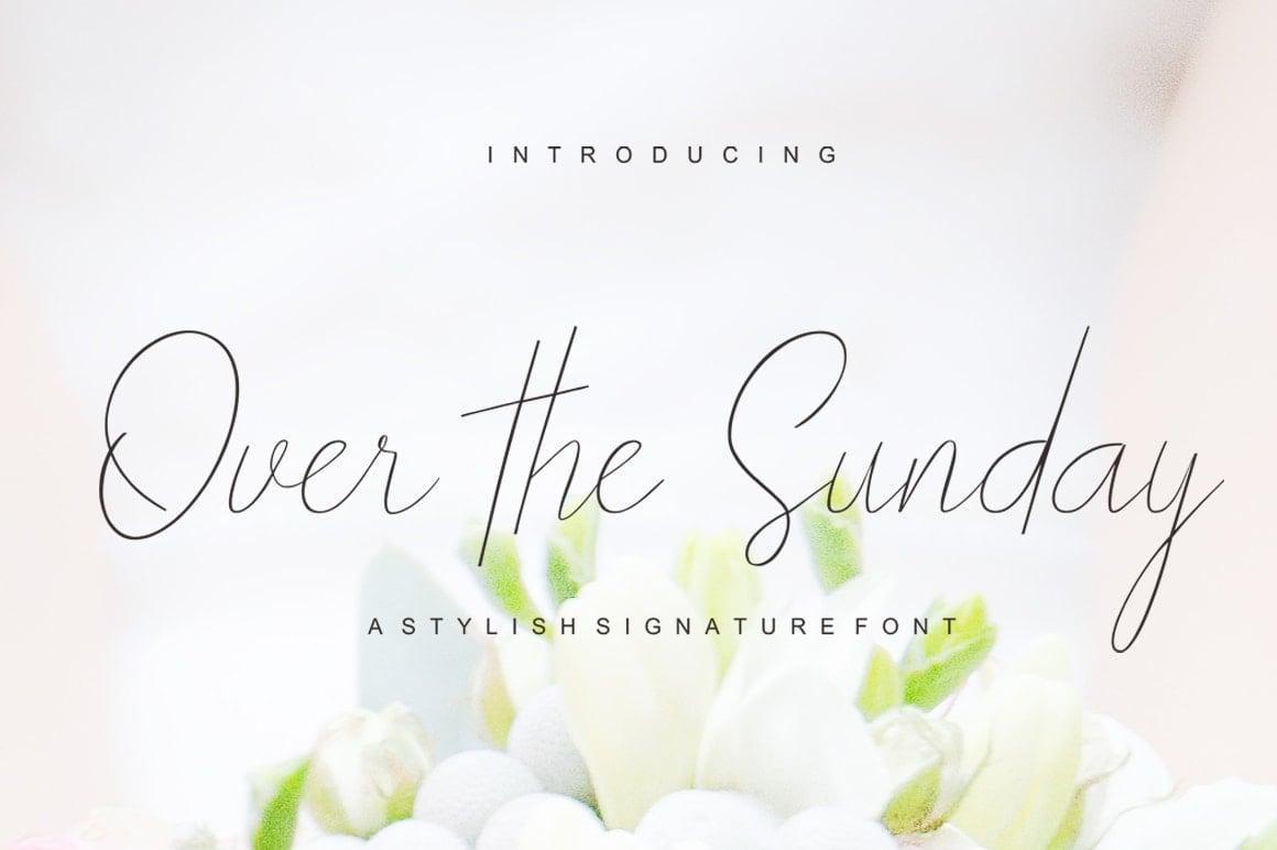 16 Handwritten Fonts - $15 ONLY - T Sunday 1 min