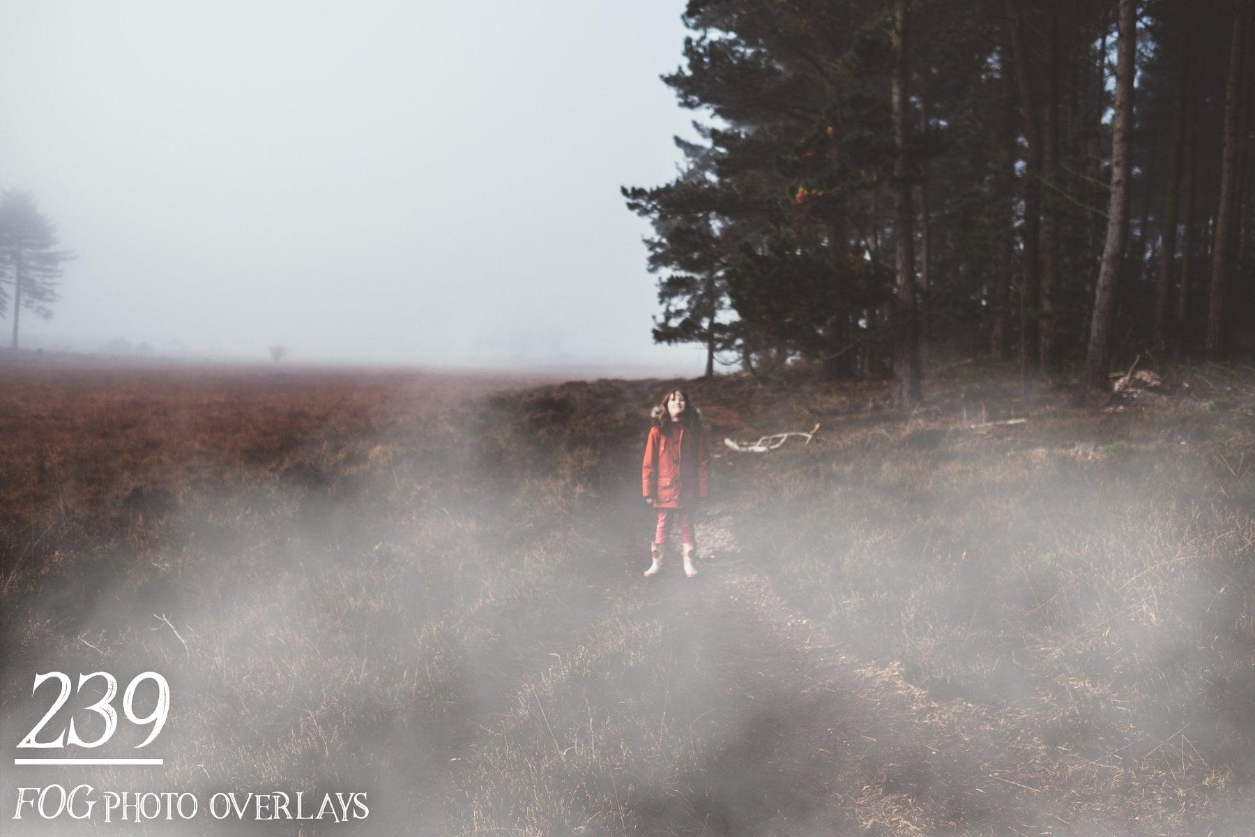 239 Fog Photo Overlays - just $15 - 22