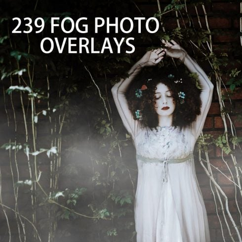239 Fog Photo Overlays - just $15 - 600 36 490x490