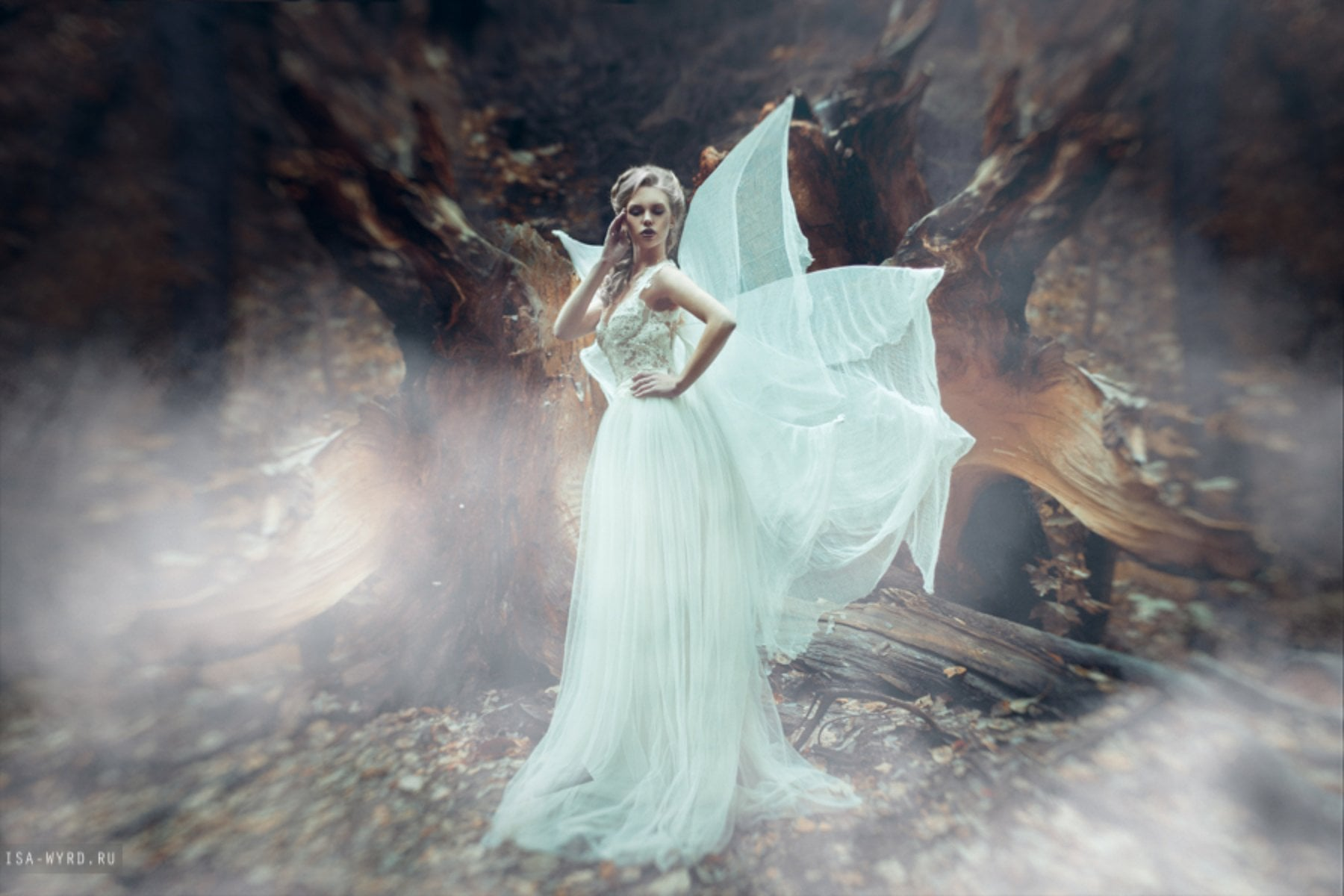 239 Fog Photo Overlays - just $15 - wings by isa wyrd d8q4s1w
