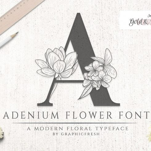 60+ Fun Fonts: Best Free and Premium Funny Fonts