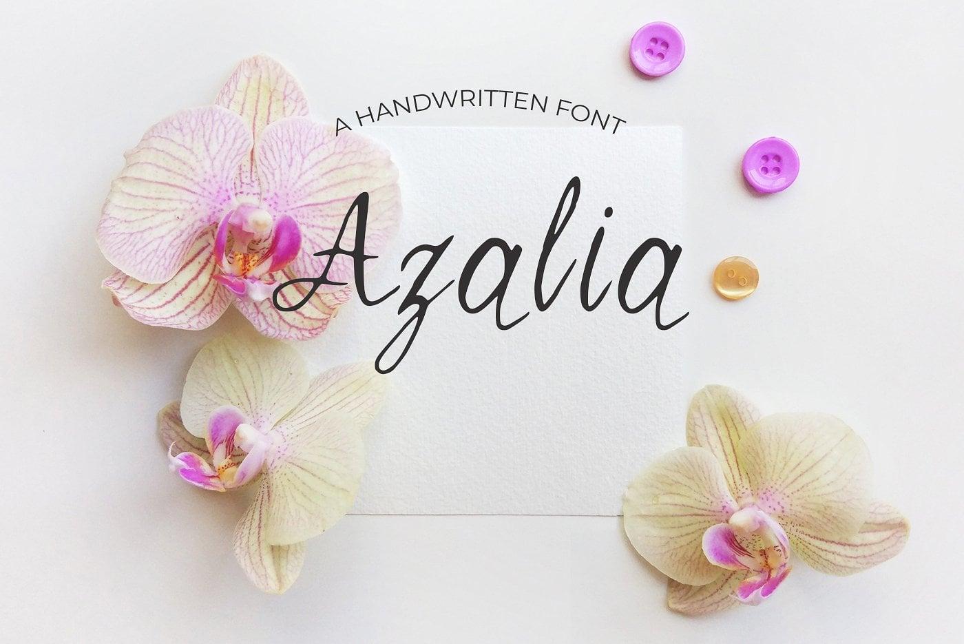 15 Creative Handmade Fonts - $19 ONLY - main image. 12