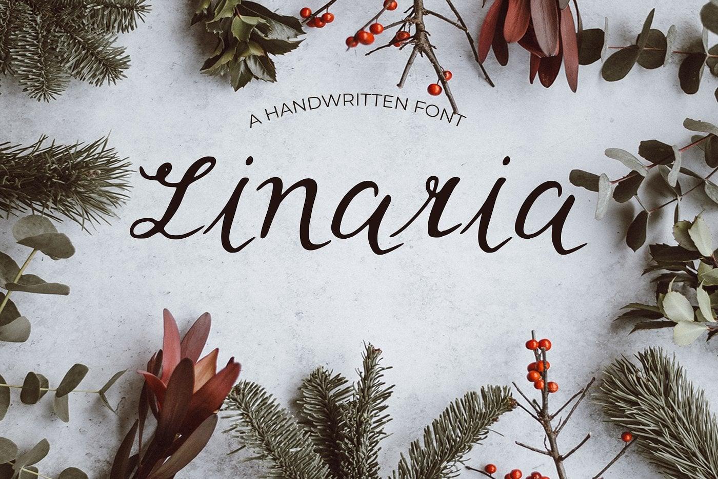 15 Creative Handmade Fonts - $19 ONLY - main image. 3