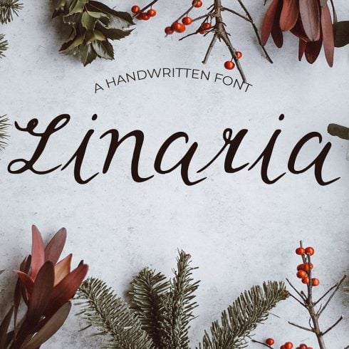 Linaria Handmade Font - $9 ONLY - 600 11 490x490