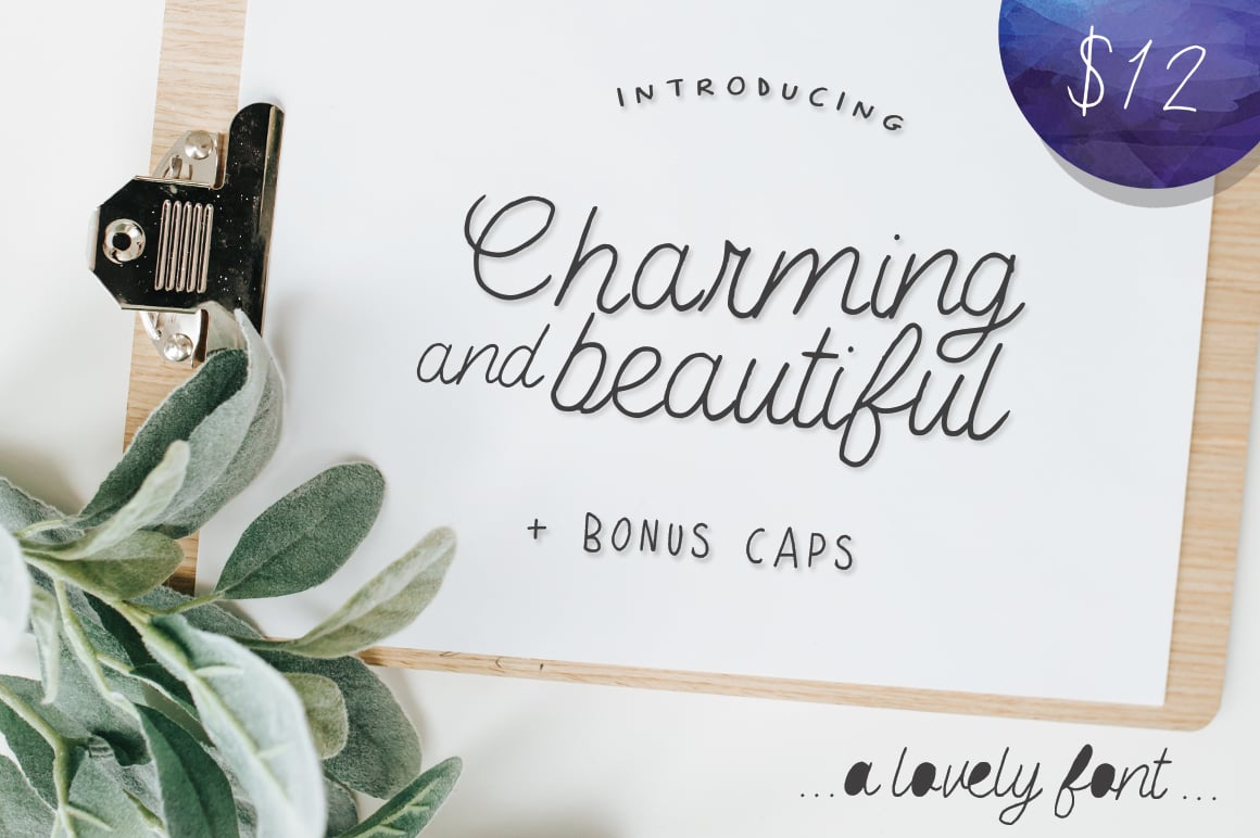 The Salt & Pepper Fonts Bundle - $19 - 237e202340ba6a4f6e28a1735337eda54f65827a