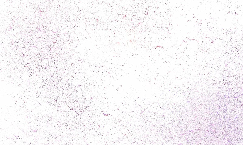 Technologic Collection: 910 Overlays, Textures and Backgrounds - 5 min 1 1