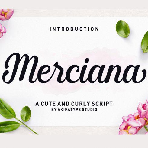 Merciana Script FONT - $5 ONLY - 600 2 490x490