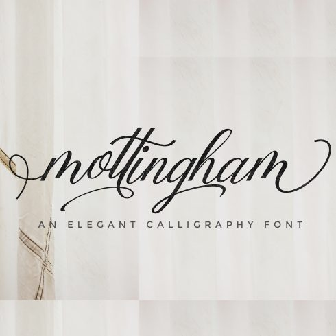 Mottingham Elegant Calligraphy Typeface - $12 - 600 4 490x490