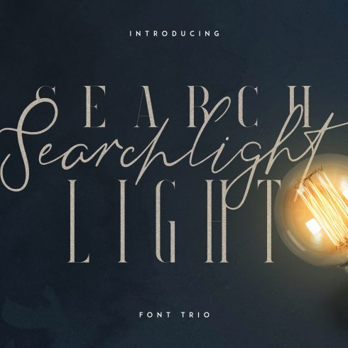 Stylish Fonts Download - Searchligth Font Trio $19 Only - 600 490x490