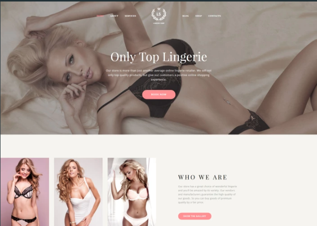 LS - Fashion Lingerie Shop Responsive Multipage Website Template