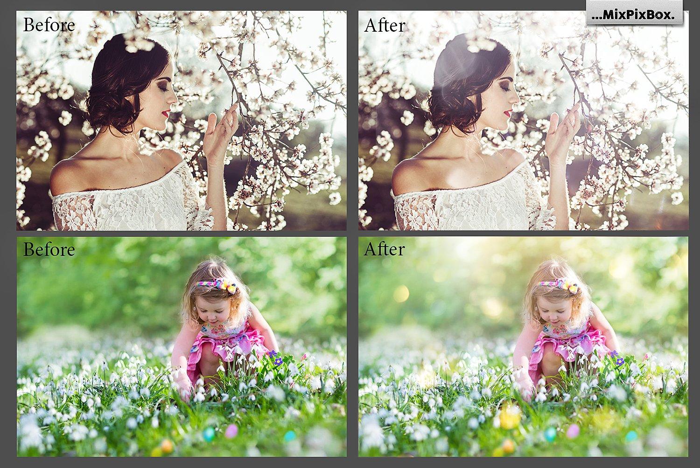 42 Spring Sunbeams Photo Overlays