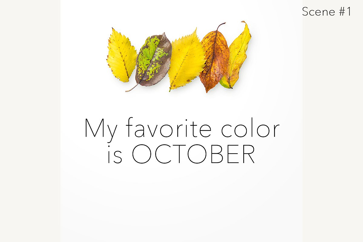 Autumn Leaves Creator Kit