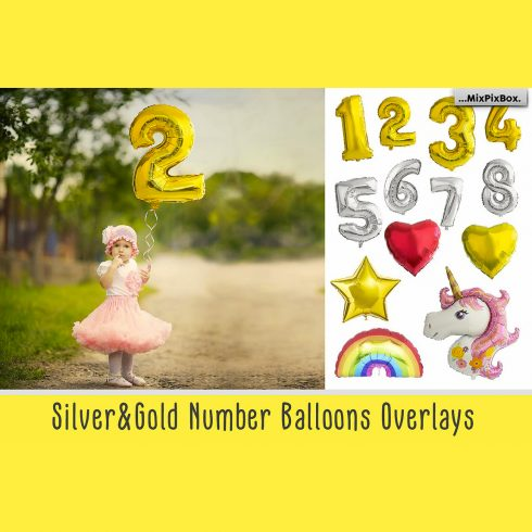 27 Balloon Numbers Overlays - $10 - 600 20 490x490