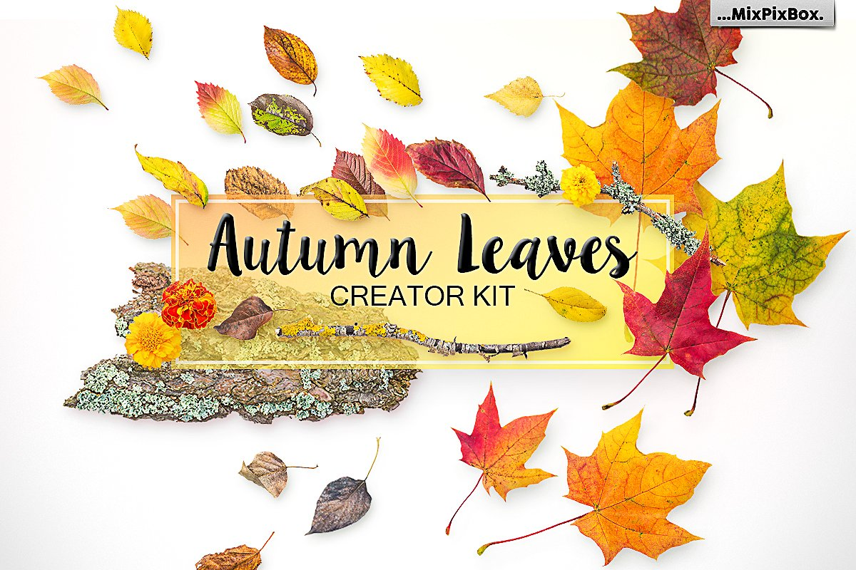 70+ Best Fall & Autumn Clip Art Collection in 2020 - cover 1 1