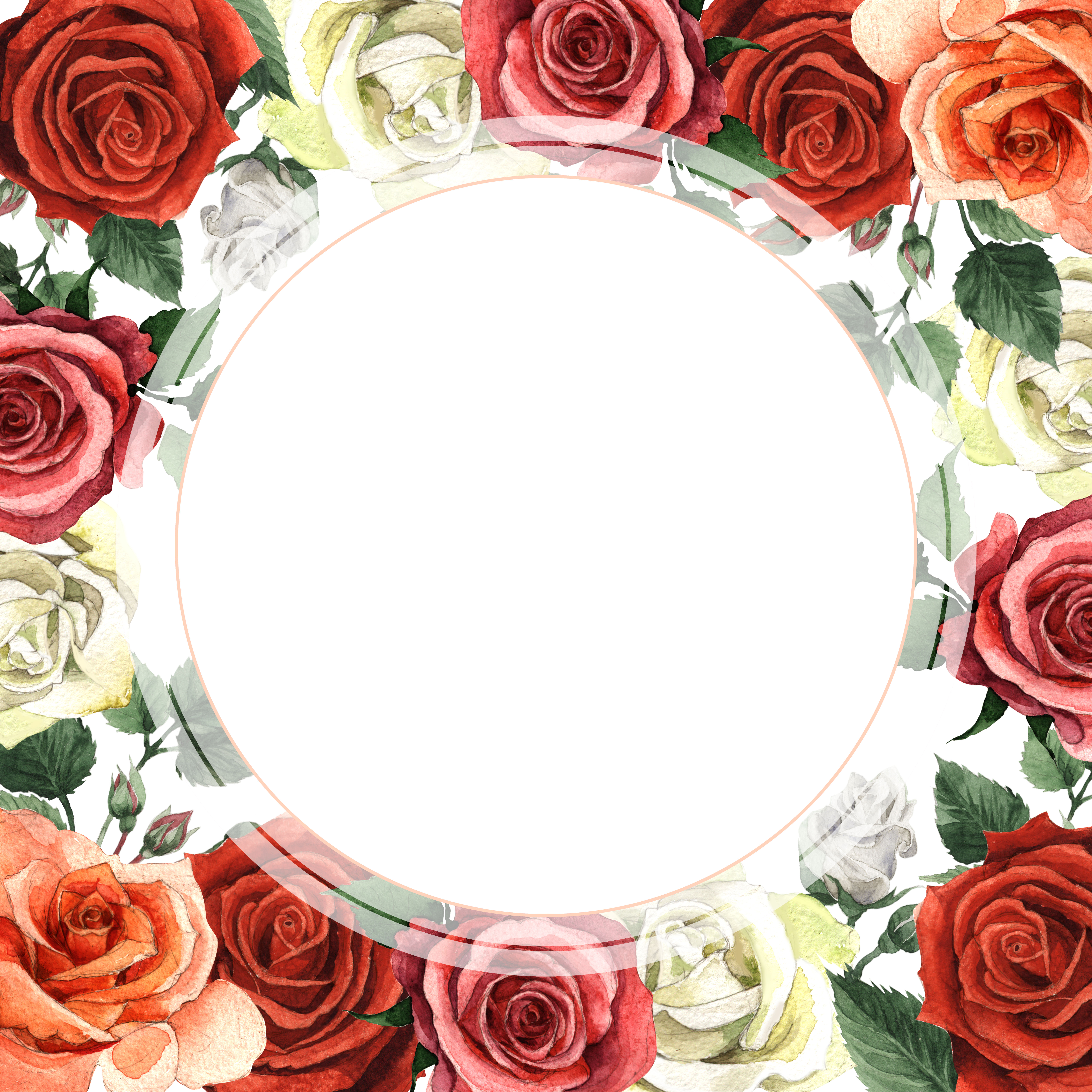 Colorful roses PNG watercolor set