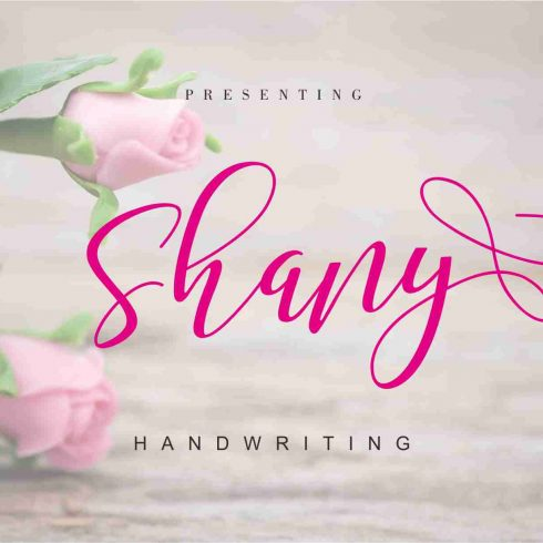 Shany - Modern Hand-based Typography 50% Discount - 600 2 490x490