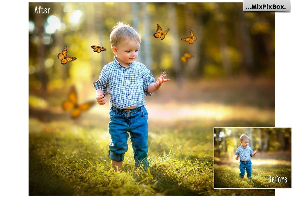 86  Butterflies Photo Overlays