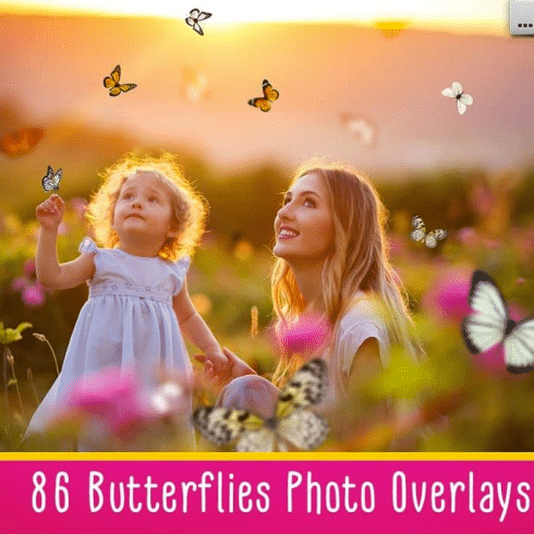 Best Butterfly Clipart 2021: What and Where to Search for?