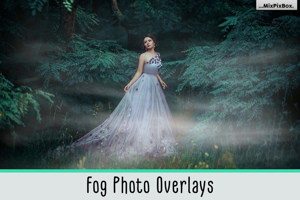 Fog Photo Overlays Bundle