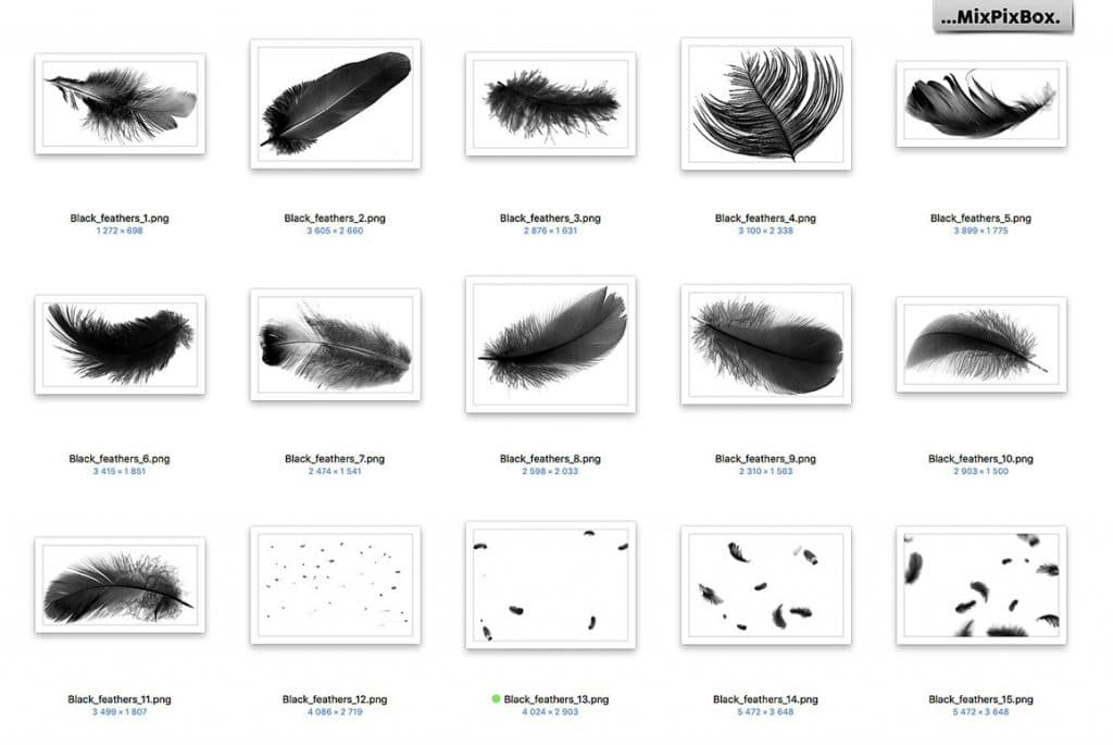 29 Black Feathers Overlays
