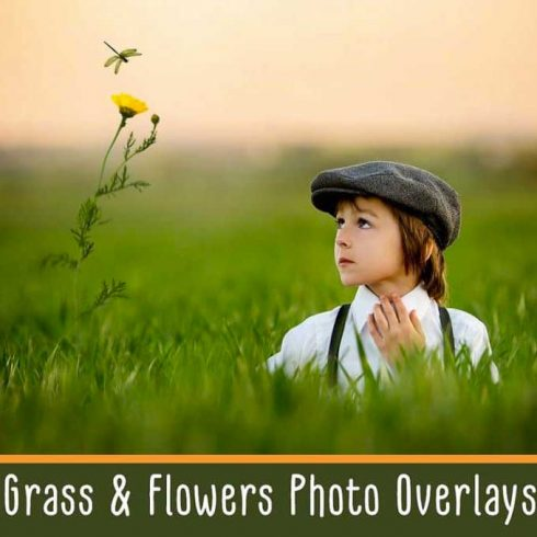 Grass and Flowers Photo Overlays - $9 - 600 7 490x490