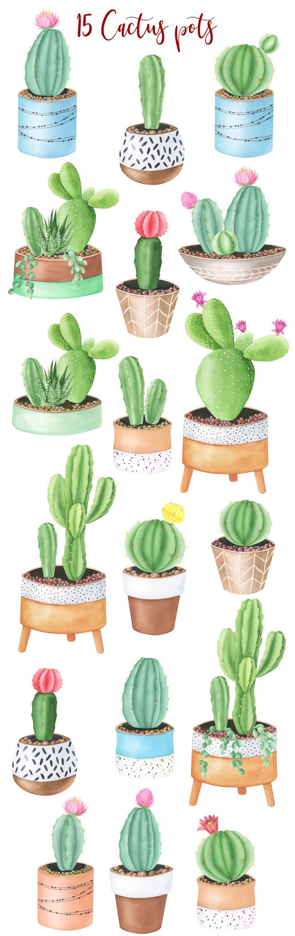 240+ Cactus Clipart 2021: Free and Premium Collections - title pots1