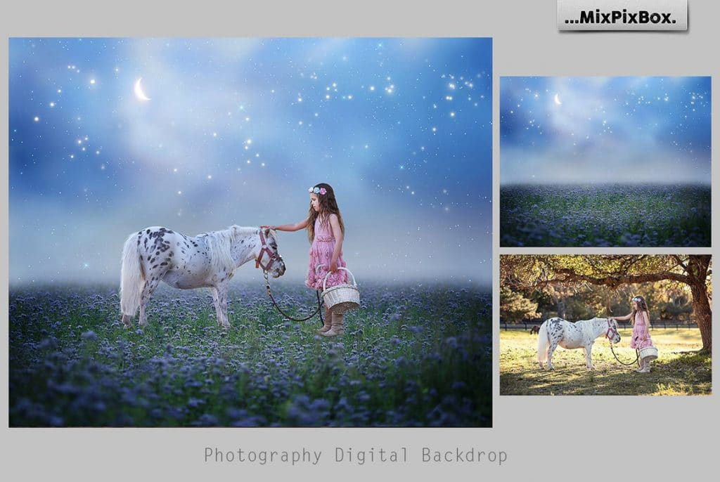 Little girl with a pony in a magic forest.