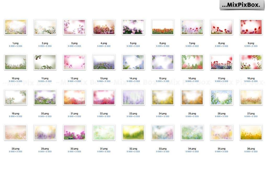36 Summer Flowers Painted Overlays