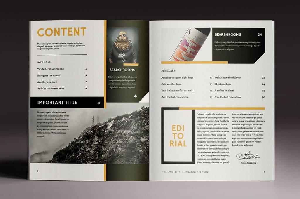 15 InDesign Magazines & Brochures - $29 - 35