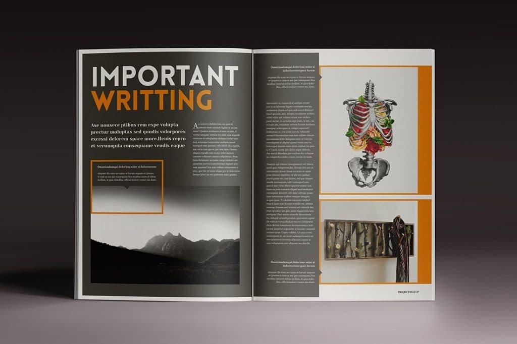 15 InDesign Magazines & Brochures - $29 - 40