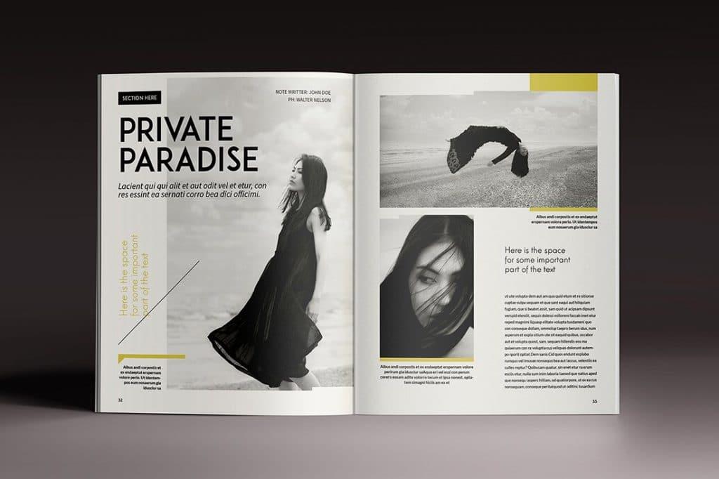 15 InDesign Magazines & Brochures - $29 - 50