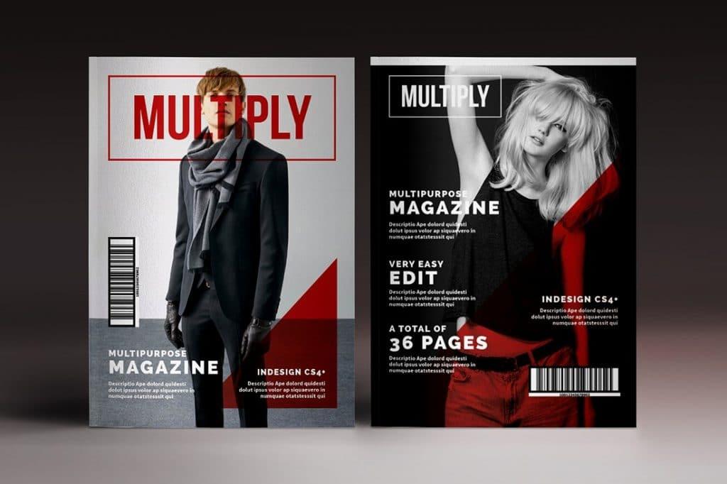 15 InDesign Magazines & Brochures - $29 - 51