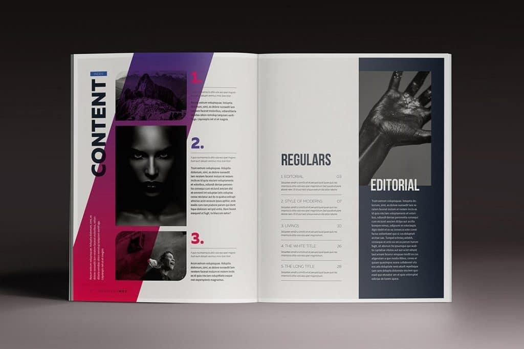 15 InDesign Magazines & Brochures - $29 - 8