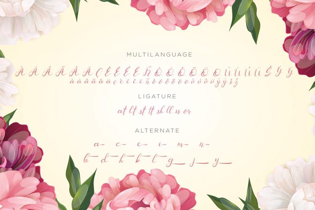 Senoritta - Beautiful Script Font - $3 - Preview11