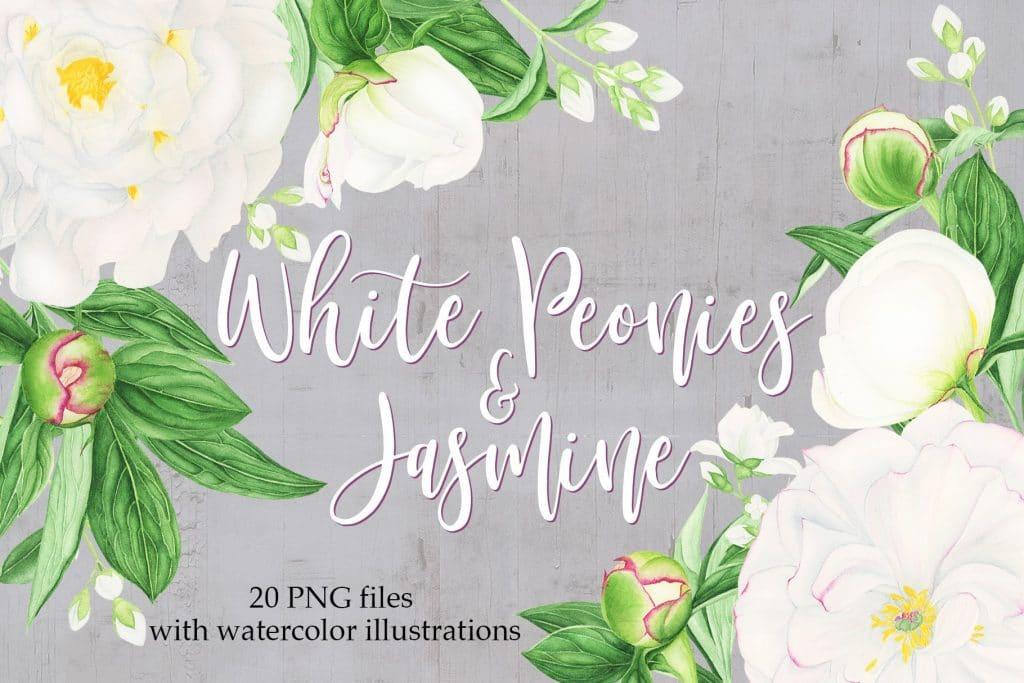 Watercolor Peonies Clipart