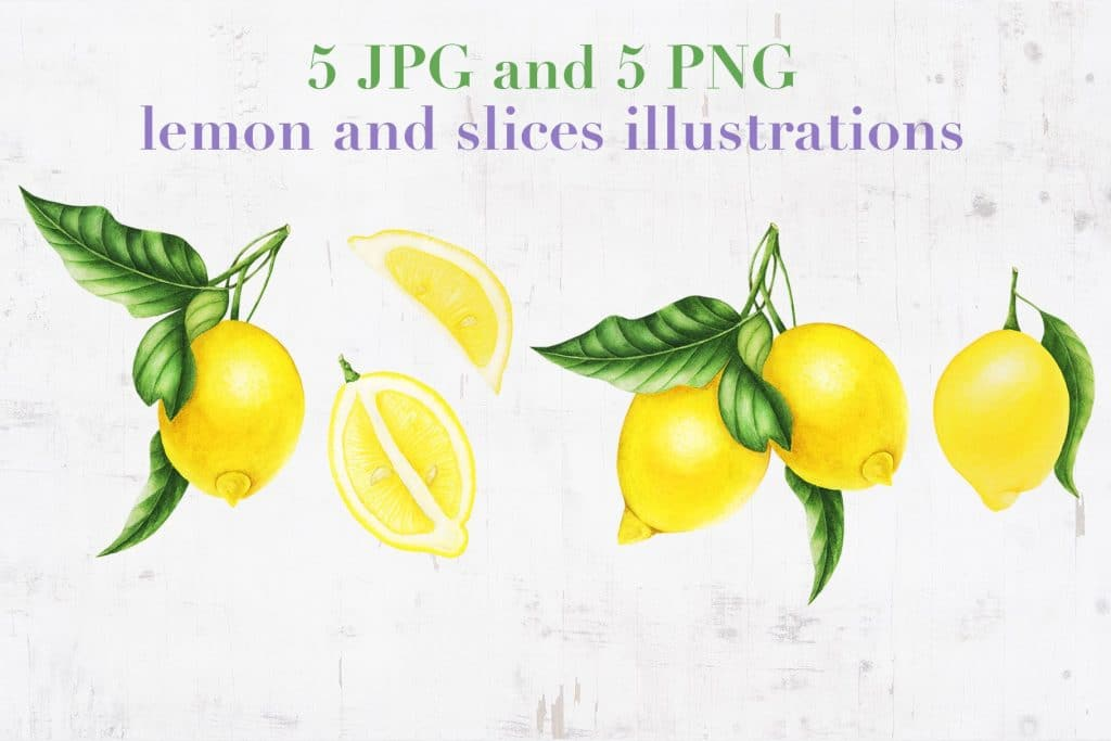 Provence: Lemons and Lavender Clipart - $14 - 02