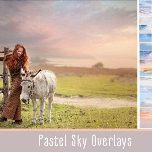 10 Free Pastel Background Images: Download HD Backgrounds - photo 2019 09 01 11 57 55 490x490