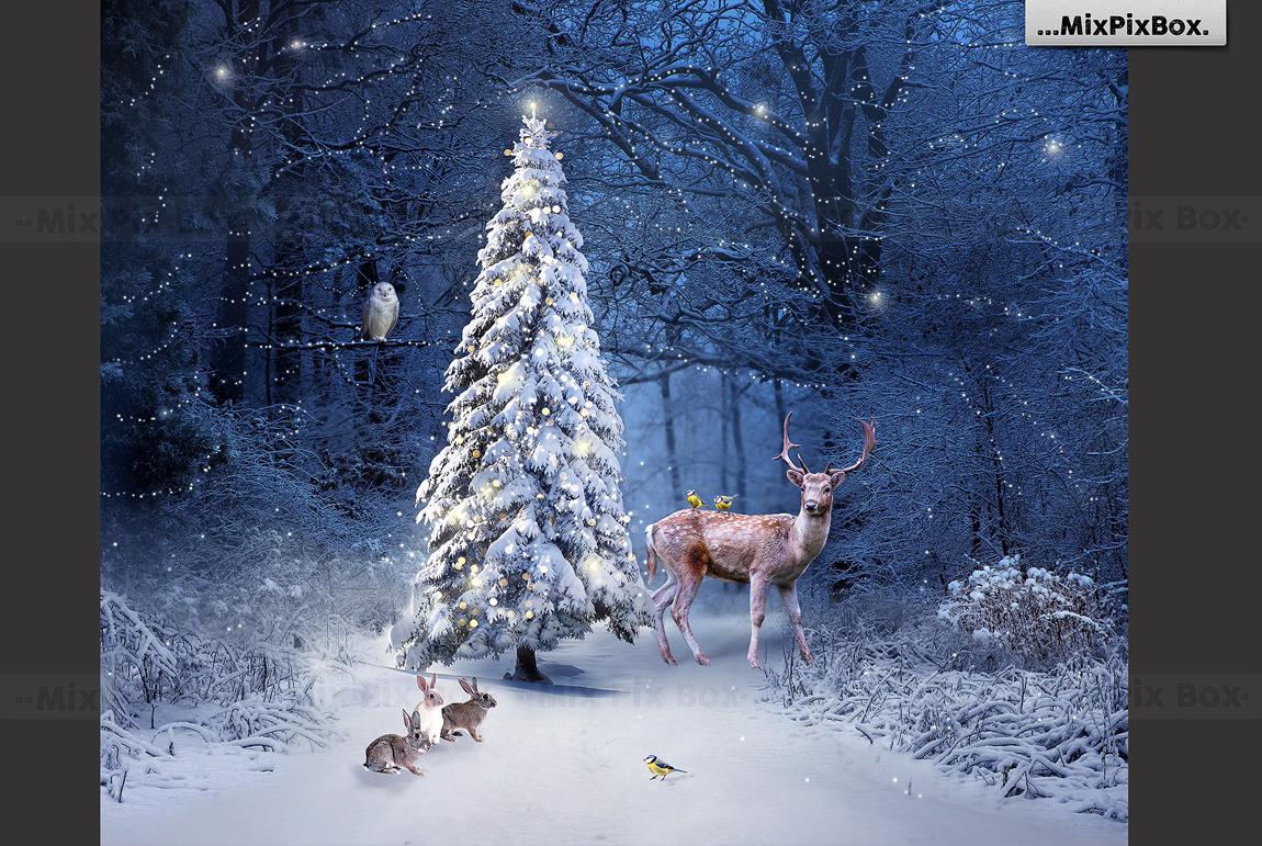 Christmas Backdrop Graphic
