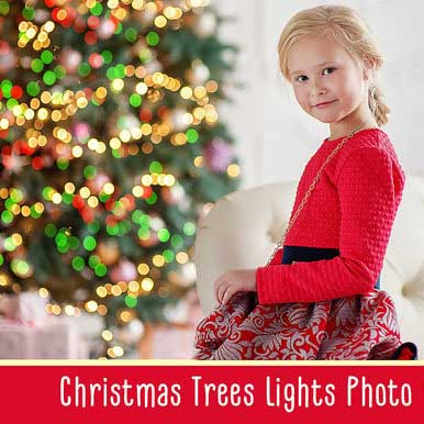 Christmas Trees Lights Overlays - $8 - 600 16