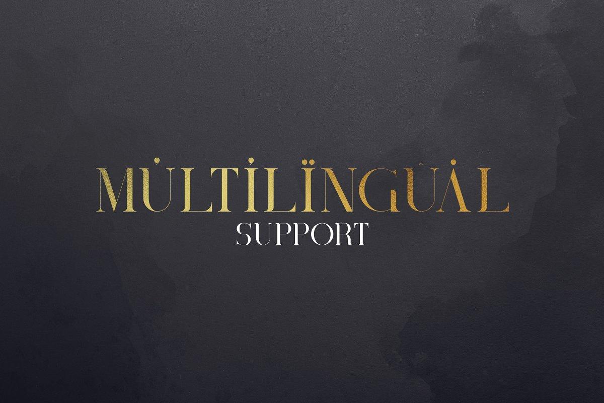 Black Gold Bundle: Serif Font, Elements, Ornaments, Photoshop Styles - $19 - 12a