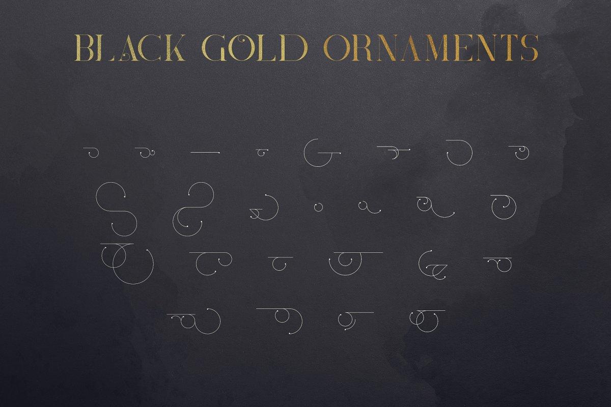 Black Gold Bundle: Serif Font, Elements, Ornaments, Photoshop Styles - $19 - 13
