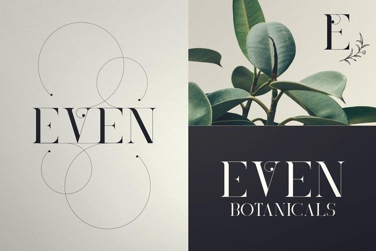 Black Gold Bundle: Serif Font, Elements, Ornaments, Photoshop Styles - $19 - 5