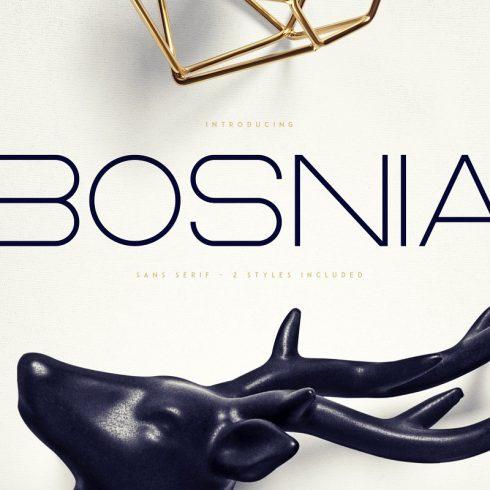 Rounded Sans Serif Font Bosnia | 2 Styles - $15 - 600 16 490x490