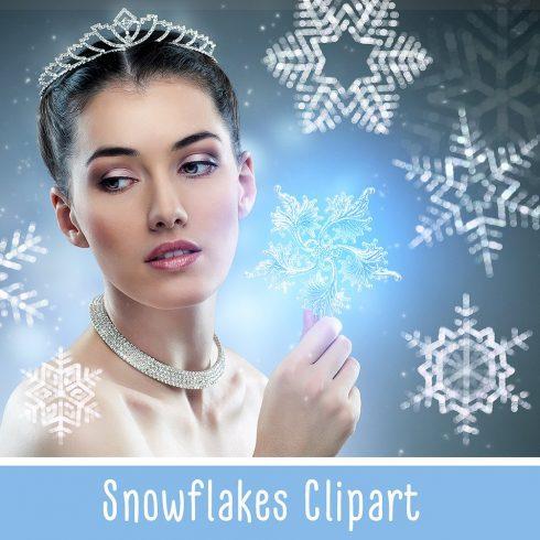 28 Snowflakes Photo Overlays - $8 - 601 1 490x490