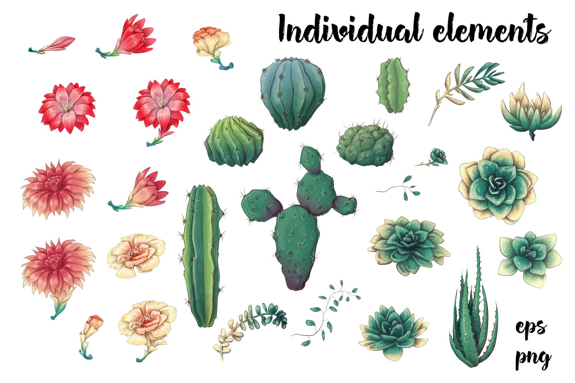 Cute Cactus Clipart: Cacti & Succulents Vectors - Image00002 1