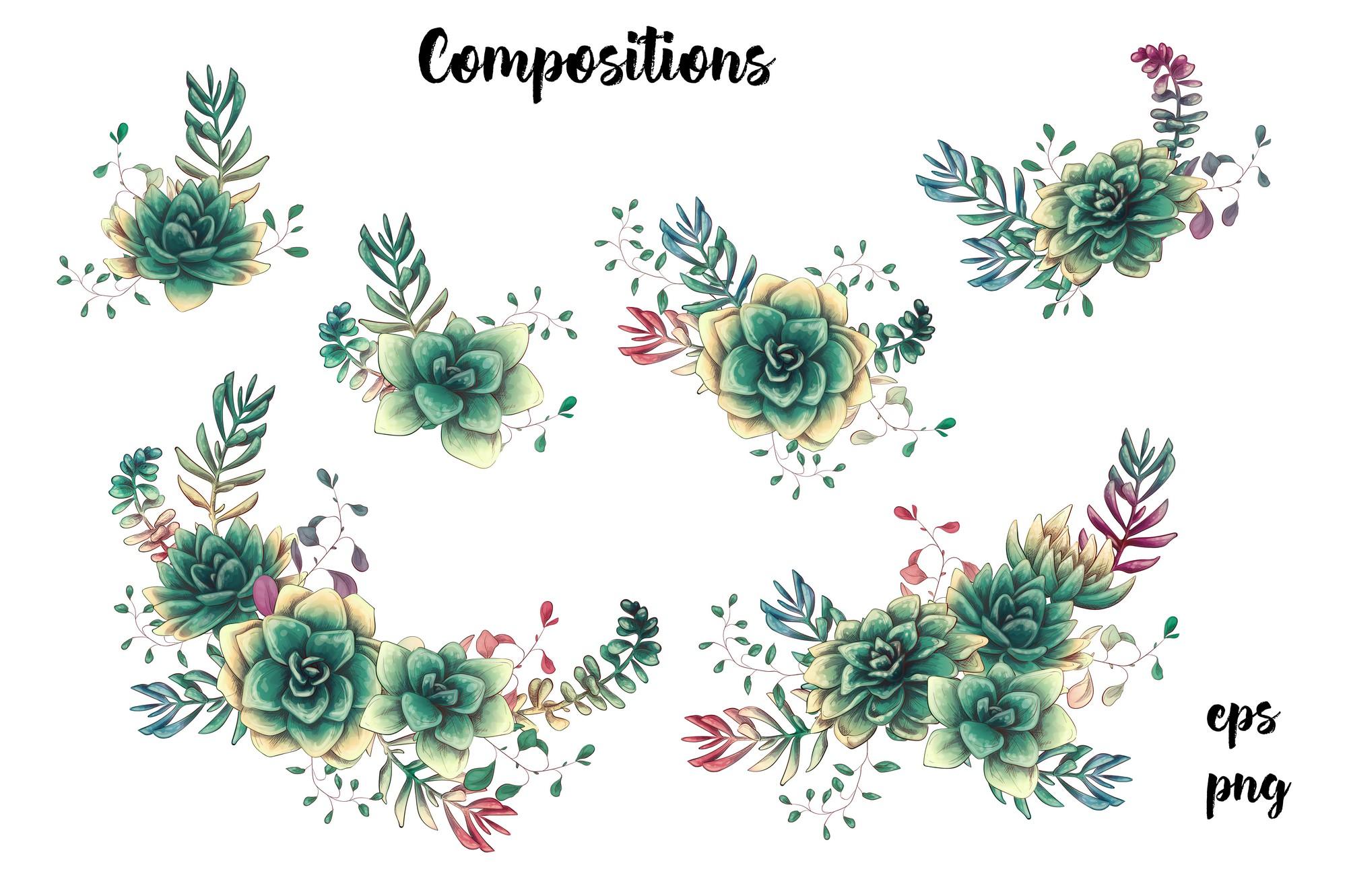 Cute Cactus Clipart: Cacti & Succulents Vectors - Image00005 1