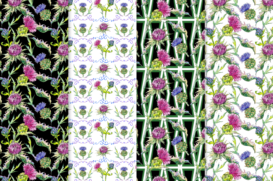 Thistle Flowers Collection PNG Watercolor Set
