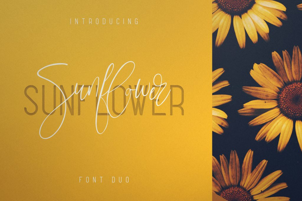 Sunflower Font Duo - Just now $19 - 1 4
